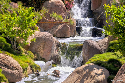 The Japanese Garden, Van Nuys, CA