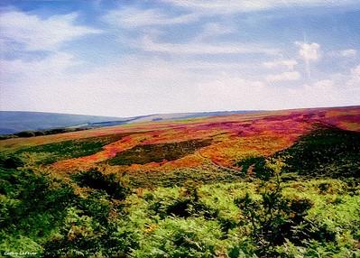 Exmoor National Park, Devon, England
