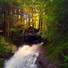 Moss Glen Falls Backlight