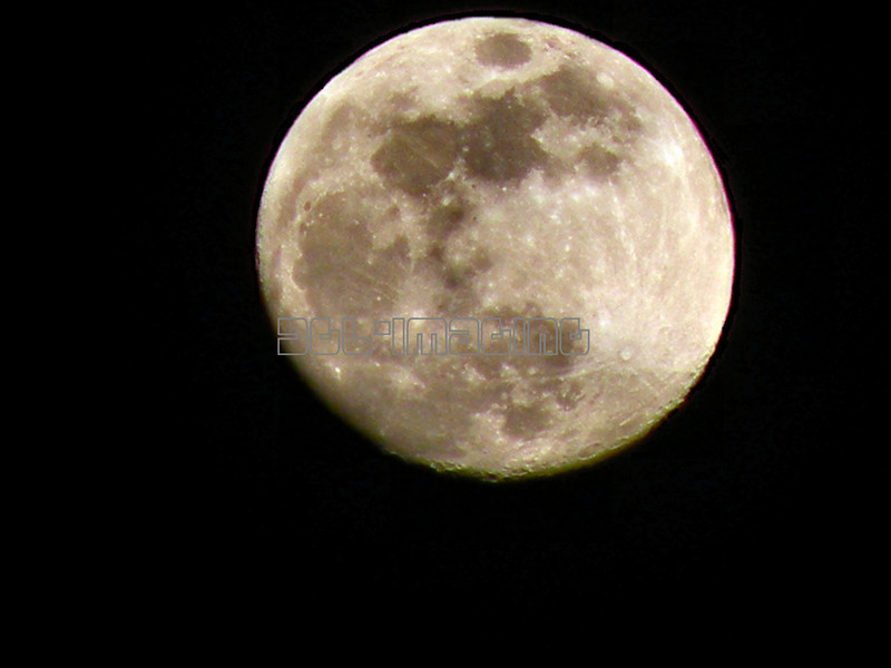 Winter Moon 2-8-09