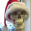 No bones about it, the Christmas Season is upon us. (Photo taken at Professional SportsCare & Rehab in Gambrills, Maryland)