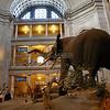 Smithsonian Museum Exhibit