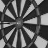 184/366 - Bullseye