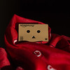 48/366 - Bundled Up Danbo