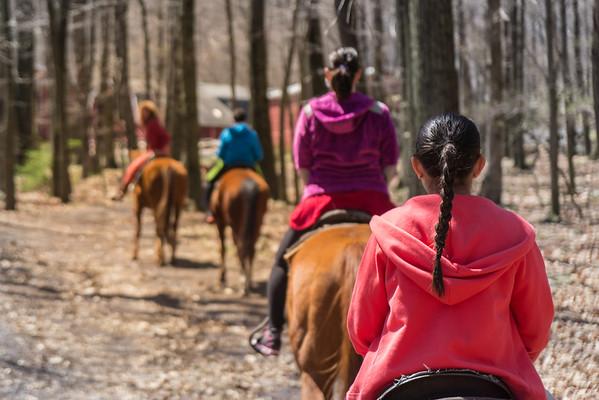 114/366 - Horseback