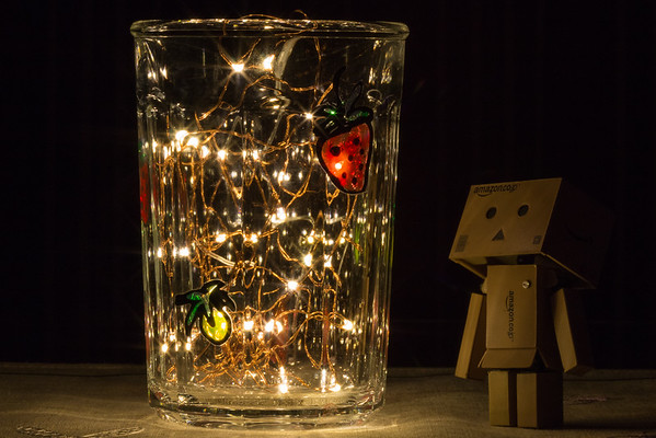 78/366 - Danbo (Silly/For Grins)