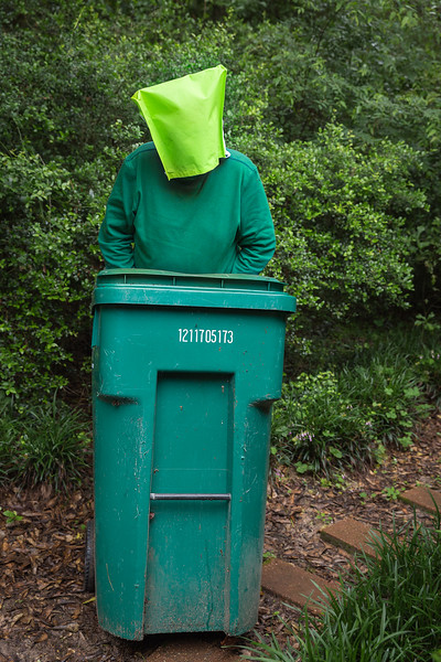 Theme - Green (2)