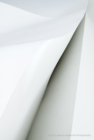 Lines of Gehry #14