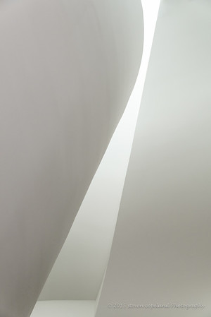 Lines of Gehry #9