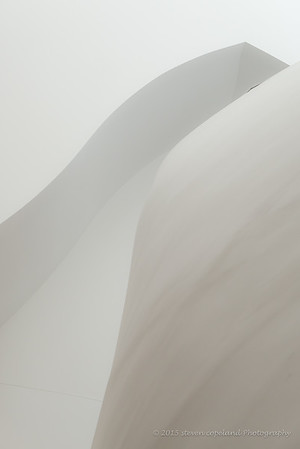 Lines of Gehry #4