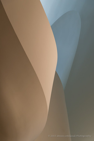 Lines of Gehry #15