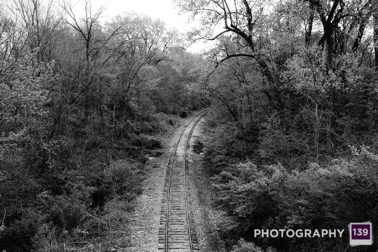Photo Journal - Page 43