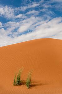 2013-09-10-Dunes-0052