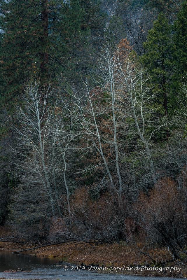 2014-12-09-Yosemite-0047-2