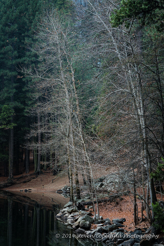 2014-12-09-Yosemite-0053-2