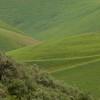 Green Hills - 1