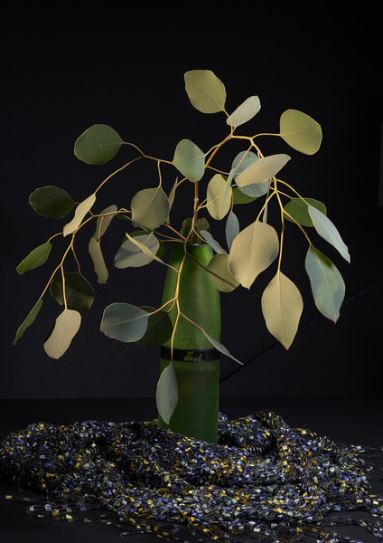 Eucalyptus Leaves with Scarf