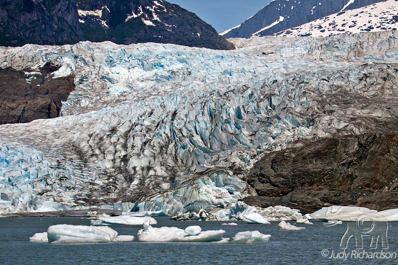 Mendenhall Glacier ~ Juneau, Alaska