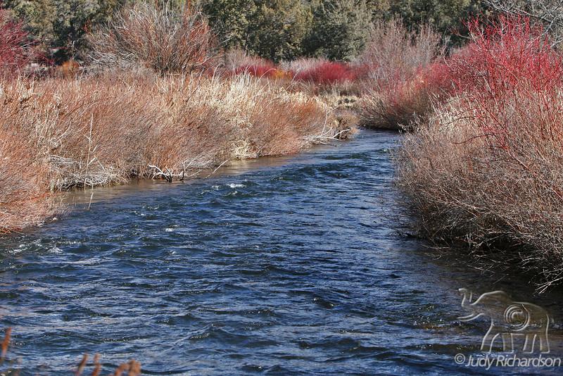 Tumalo River ~ Bend, Oregon