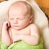 York Newborn 8