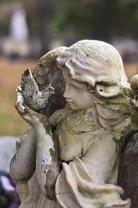 Kingston Graveyard-9