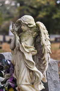 Kingston Graveyard-8