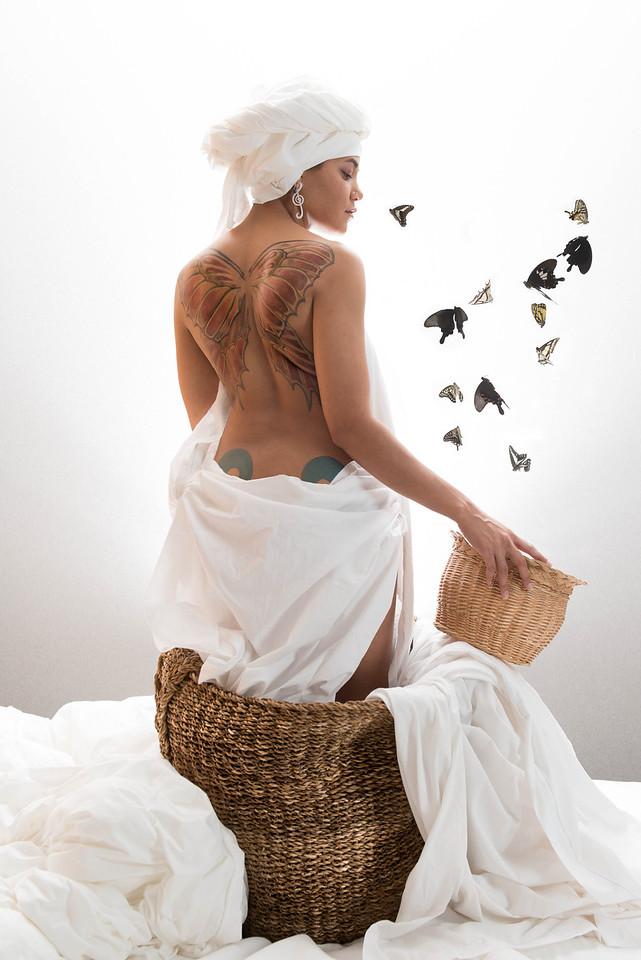 Butterflies © Alex Huff