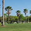 Golf Course-13