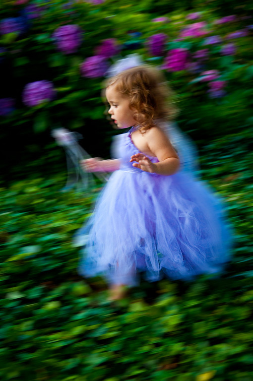 On our travels, we spotted a beautiful fairy and decided to follow her.