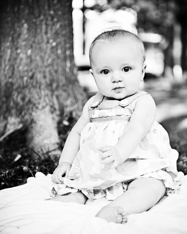 "©2011 Stephanie Snyder Photography.  <a href=""http://www.StephanieSnyderPhotography.com"">http://www.StephanieSnyderPhotography.com</a>  All Rights Reserved."
