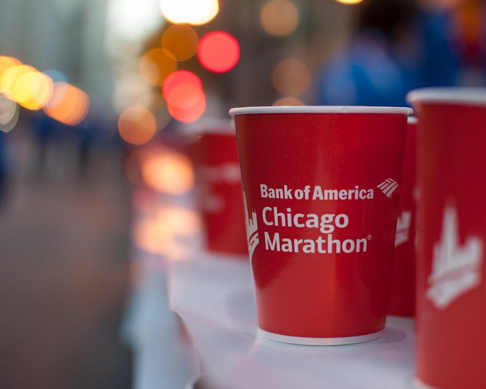 || Chicago Marathon ||