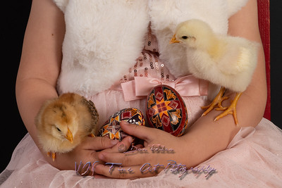 Cute Girl Holding Yellow Chick and Easter Eggs