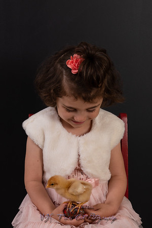 Little Girl Holding Yellow Chick and Easter Eggs