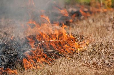 Mid-Atlantic Wildfire Training Academy_photos by Gabe DeWitt_June 07, 2014-100-2