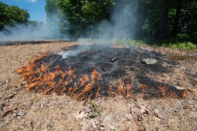Mid-Atlantic Wildfire Training Academy_photos by Gabe DeWitt_June 07, 2014-82-2