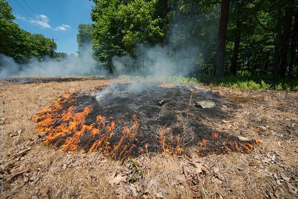 Mid-Atlantic Wildfire Training Academy_photos by Gabe DeWitt_June 07, 2014-83-2