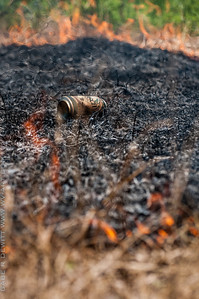 Mid-Atlantic Wildfire Training Academy_photos by Gabe DeWitt_June 07, 2014-3-2