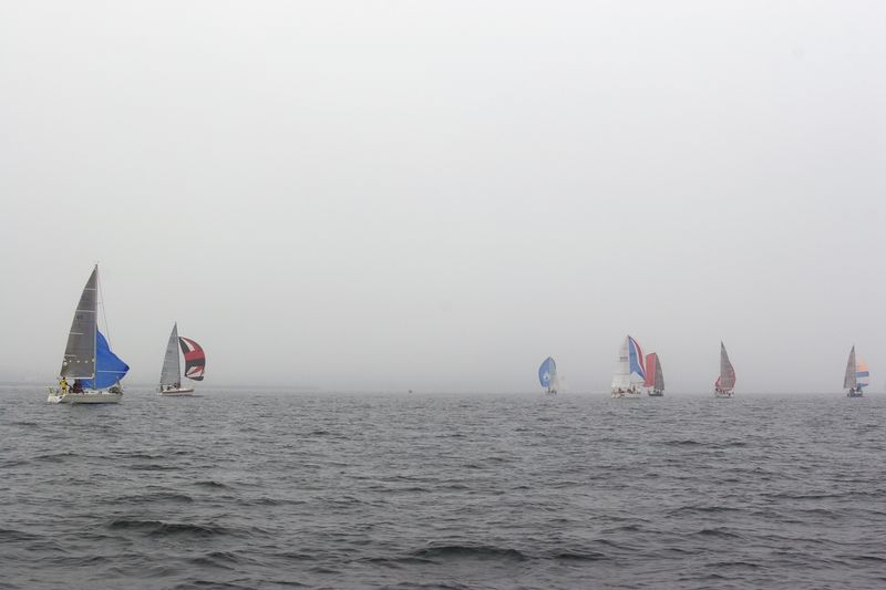 Spinnakers in the Fog