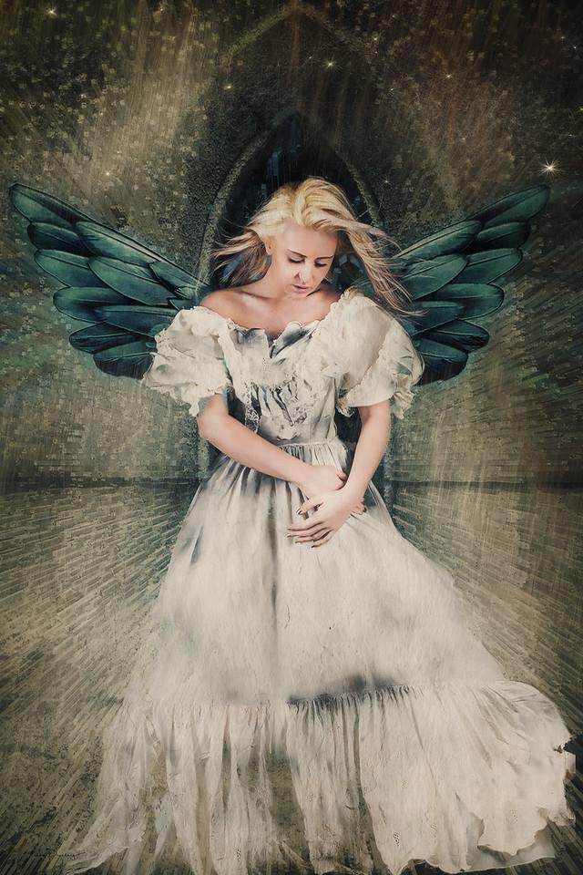 Angel in Elmwood