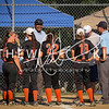 Lady Panthers vs Wentzville Timberland (Troy Tournament)