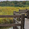 Record-Eagle/Vanessa McCray<br /> <br /> A boardwalk along the Jordan River at East Jordan's Sportsman's Park is among the places suggested to take in fall colors while driving The Breezeway or C-48.