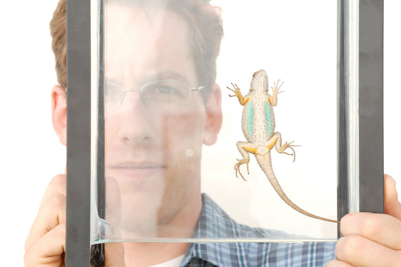 Photographer Matthew Fienup with one of his subjects, an adult Western Fence Lizard.