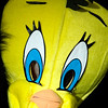 Record-Eagle/Jan-Michael Stump<br /> A Tweety Bird mask.
