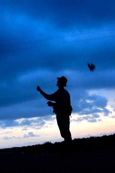 Falconer Laine McTague, of Camarillo, Calif., swings a lure through the air to signal Manuka, a female redtail hawk, to return from its training flight.  The training flight took place on a farm near Point Mugu, Calif.