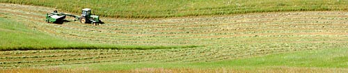 Record-Eagle/Tyler Sipe<br /> Anthony Gallagher clears a field for hay at one of the Gallagher properties in Long Lake Township.