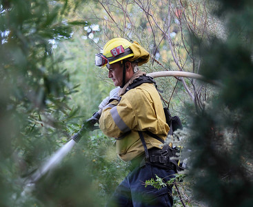 John Chaides / Courier A firemen from station 87 sprays the fire during the Skirball Fire on Wednesday, December 6, 2017.