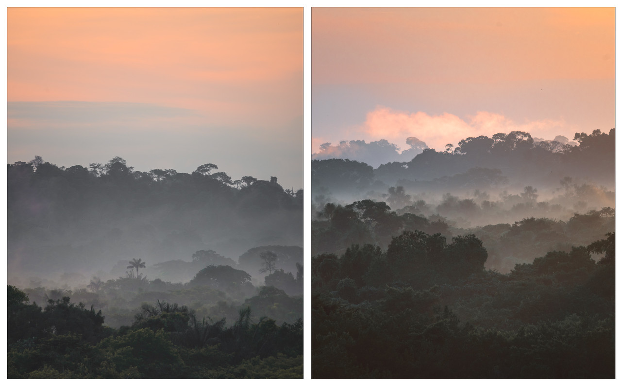 A diptych of photos showing sunrise over the Amazon in Ecuador.