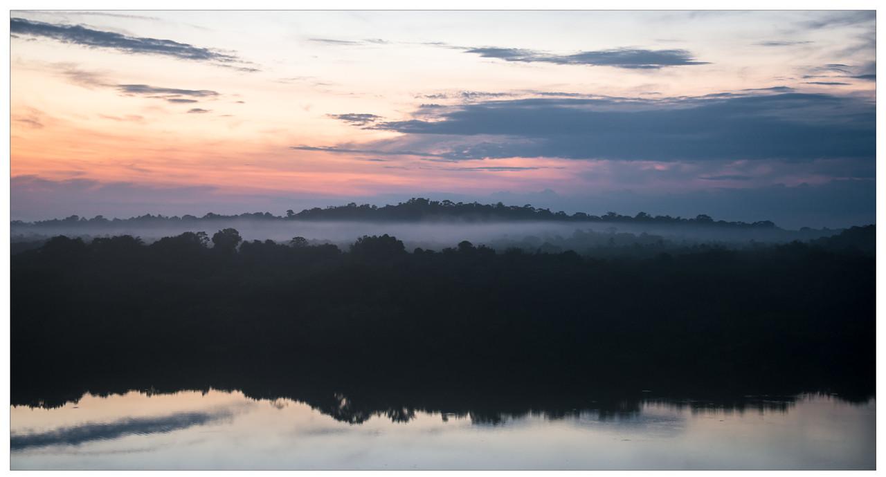 Morning mist at sunrise in the Amazon, Ecuador.