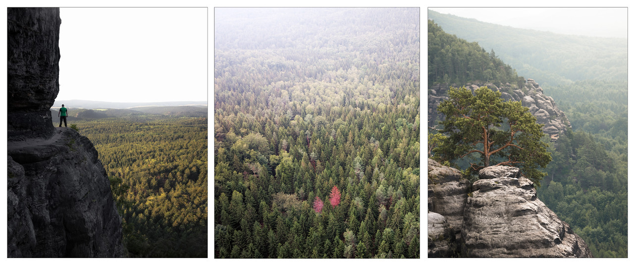A triptych mountains and trees in Saxony, Germany.