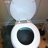 how much Kitty litter fits in one toilet